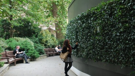 Green 'living' walls installed around Crossrail sites