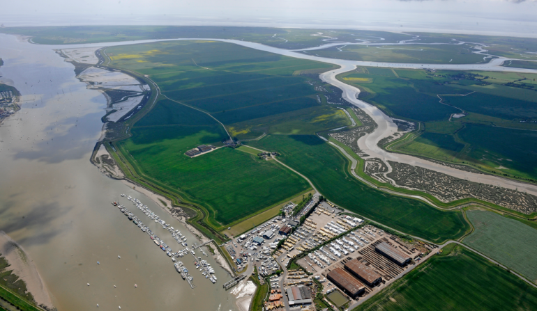 Aerial view of Wallasea Island, November 2011