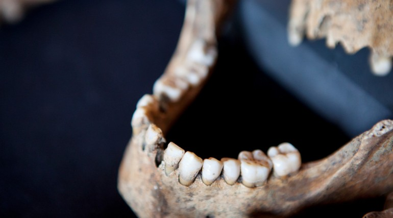 Skeletons discovered at Charterhouse Square confirmed as black death victims_132130